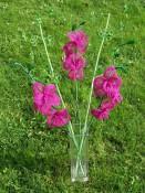 Orchidea a zelené kvítky