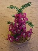 Orchidea v proutěném košíku